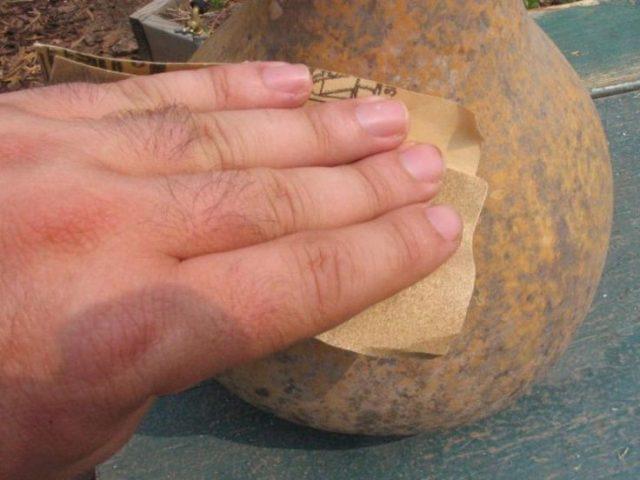 Обработка тыквы наждачной бумагой
