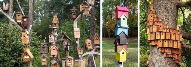Закрепляя несколько скворечников на одном участке, старайтесь выдерживать подходящее расстояние между ними, чтобы не отпугнуть птиц